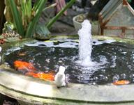 Bassin ext rieur solid 39 pool fabricant de piscine - Cascade artificielle exterieur ...